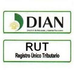 Rut dian