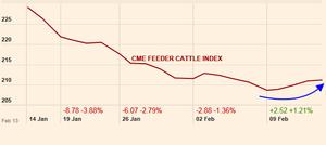 Feeder Cattle Index