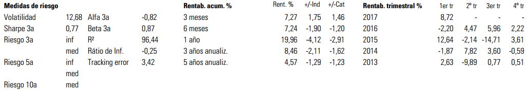 Ratios e indicadores BBVA Bolsa Emergentes