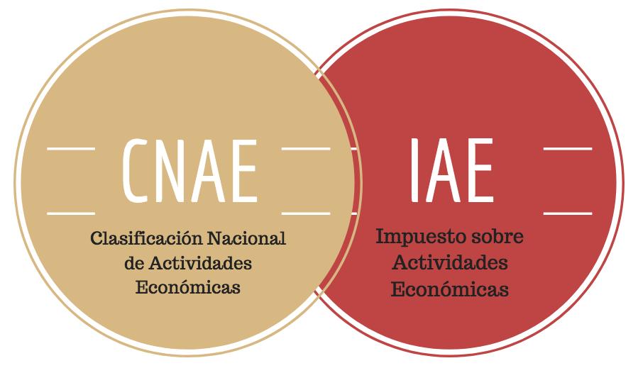 ¿En qué se diferencian el IAE del CNAE?