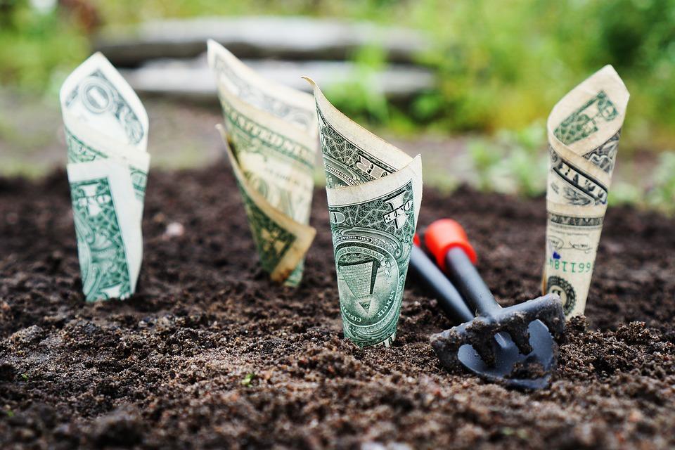 ¿Cómo comprar acciones por dividendos?