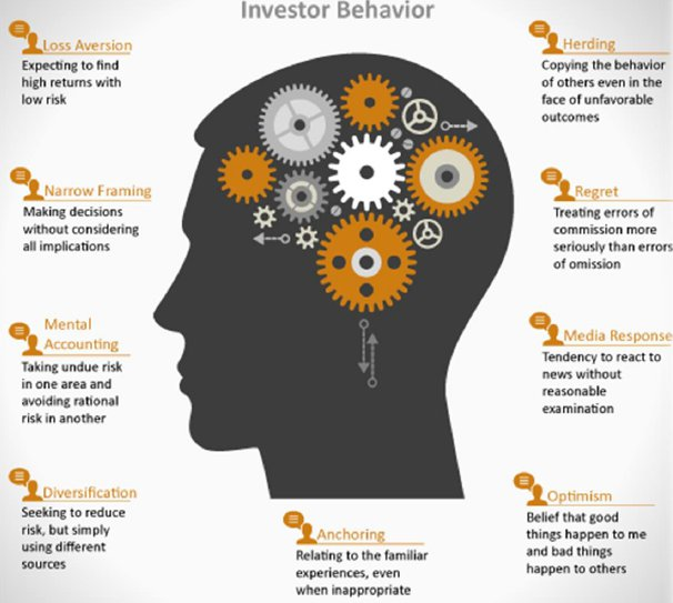 Investor Beahvior