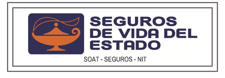 Seguros del estado: NIT, consultar SOAT y verificar póliza