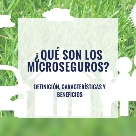 Microseguros: Definición, Características y Beneficios