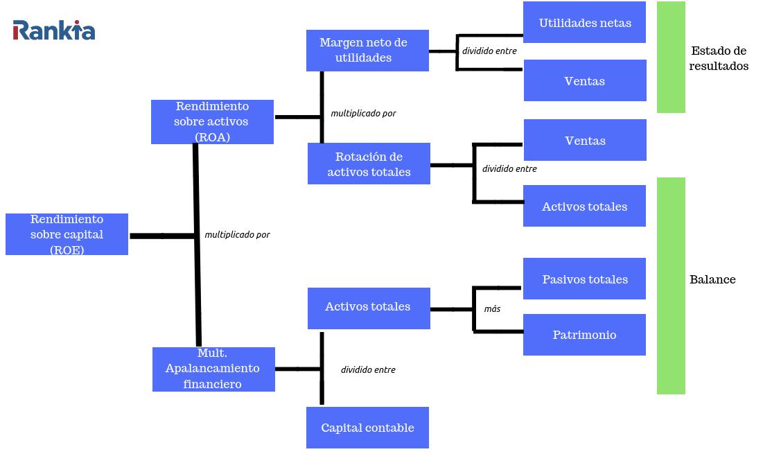 Elementos del sistema dupont