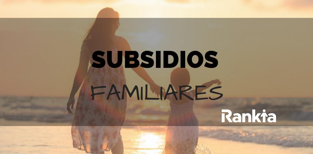 ¿Cuales son los subsidios familiares?