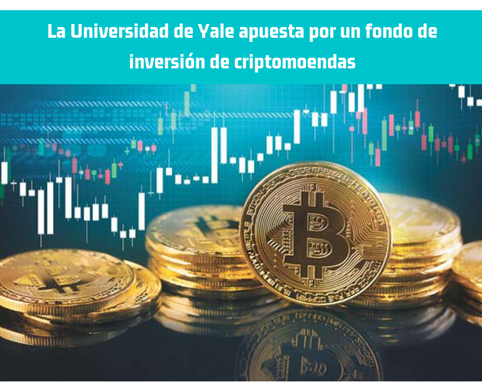 Universidad Yale, criptomonedas, fondo inversion