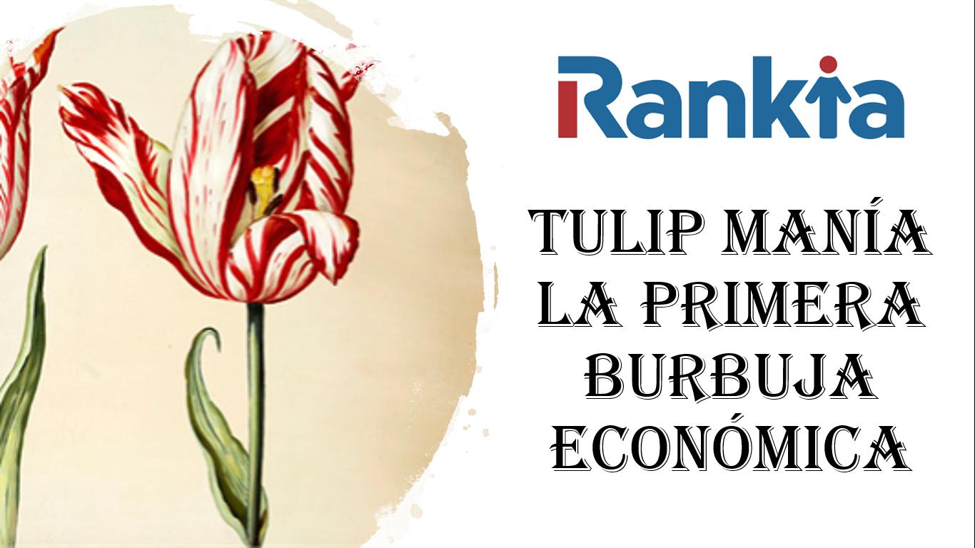 Sobre cómo unas flores reventaron la economía de los Países Bajos