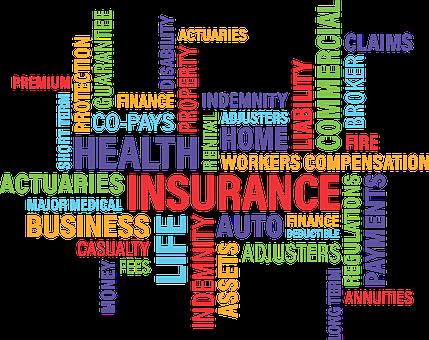 Bice Vida: productos, beneficios y formularios