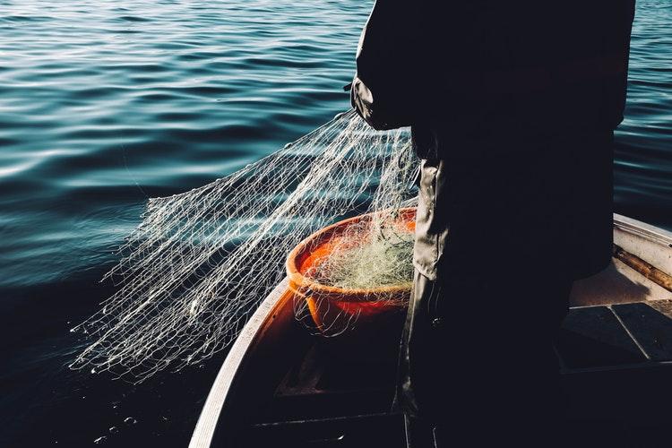 ¿Es Momento de Invertir en Pesqueras?