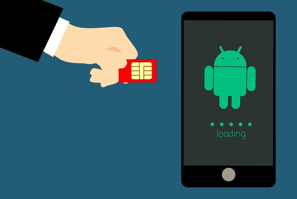 ¿Cuál es la tarjeta SIM y la SD?