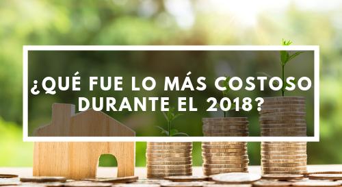 ¿Qué fue lo más costoso durante el 2018?