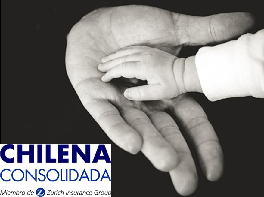 ¿Qué es Chilena Consolidada?