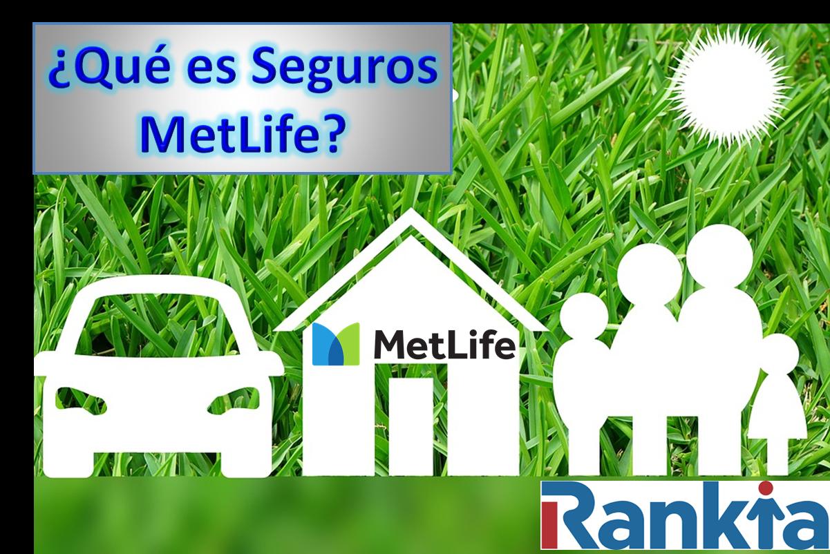 ¿Qué es seguros MetLife?
