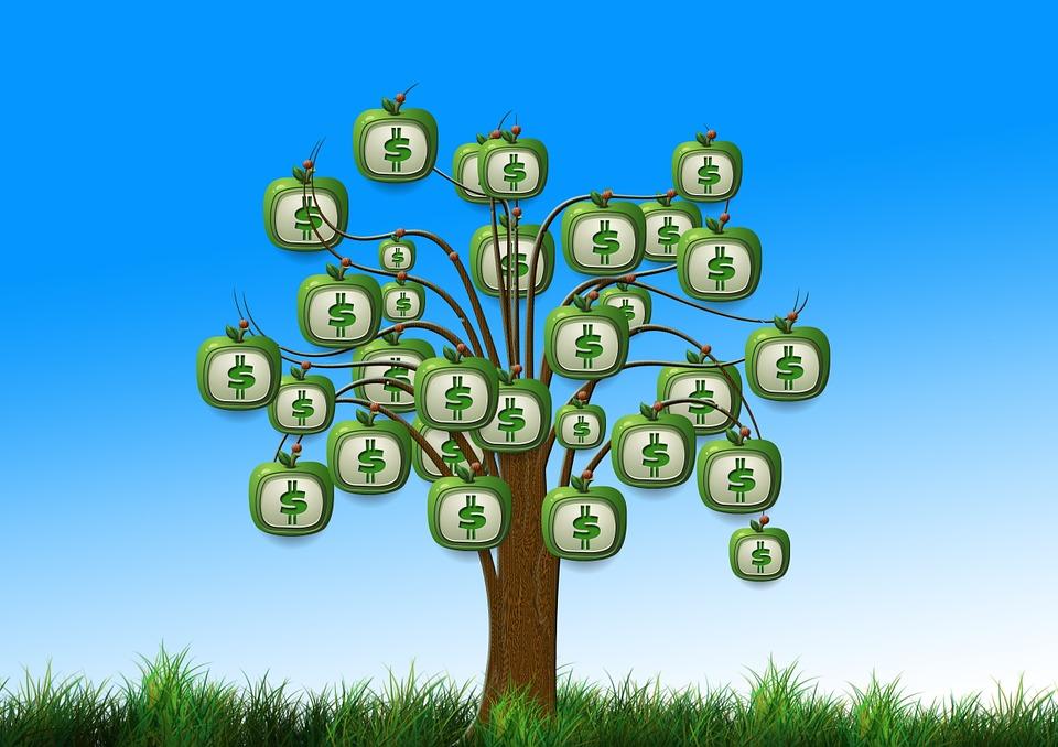 ¿Qué son los dividendos percibidos?