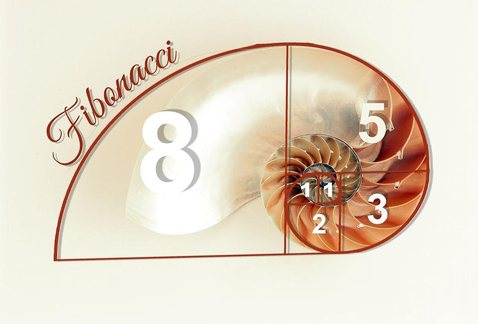 ¿Para que sirve la sucesion de fibonacci?