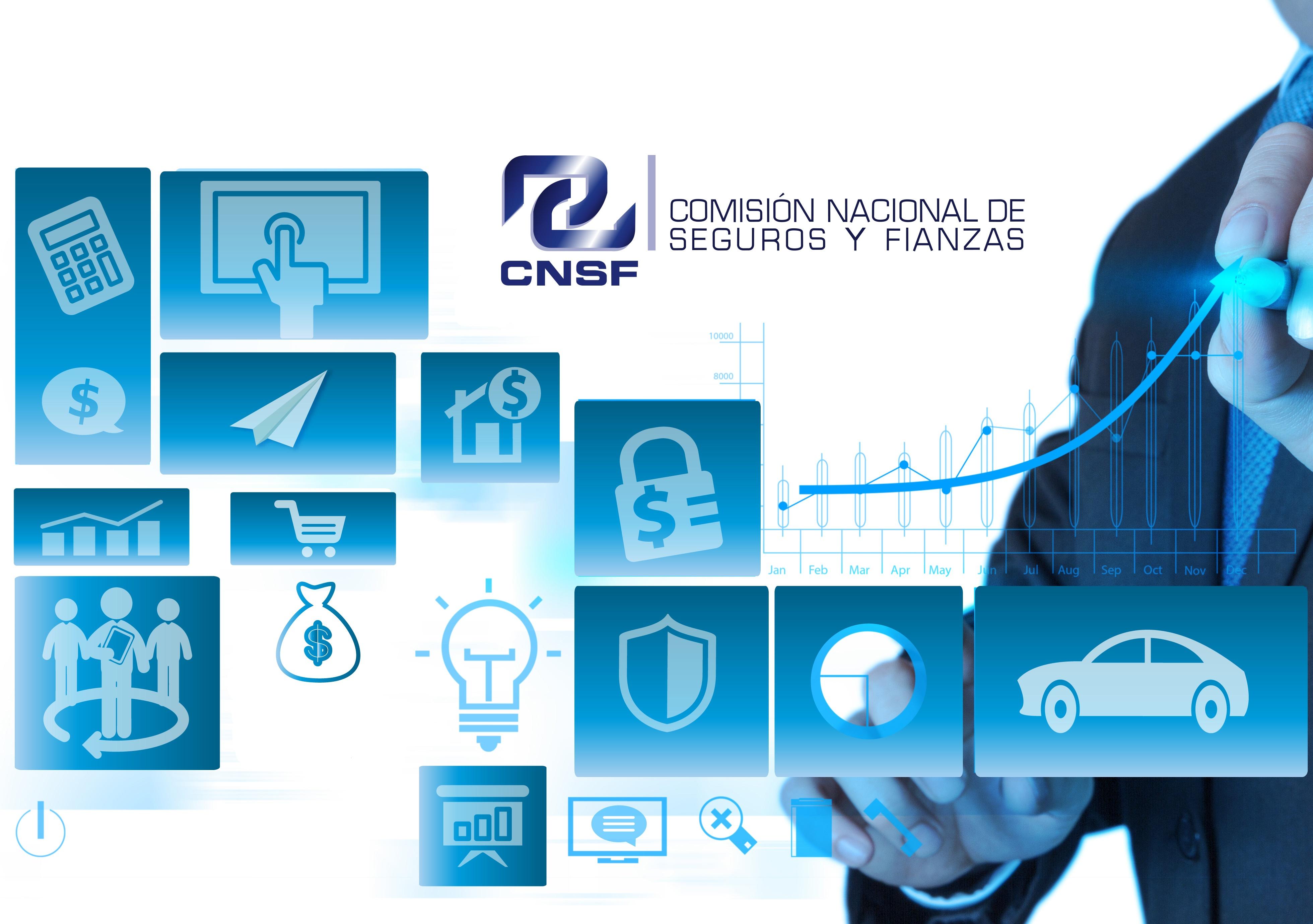 Comisión Nacional de Seguros y Fianzas CNSF