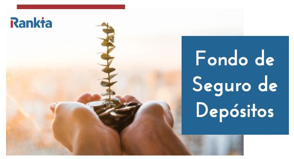 ¿Qué es el Fondo de Seguro de Depósitos y para qué sirve?
