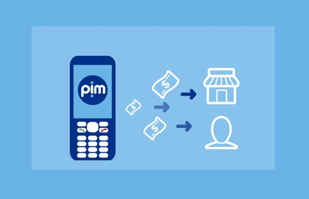 ¿Qué es PIM y cómo lo activo?