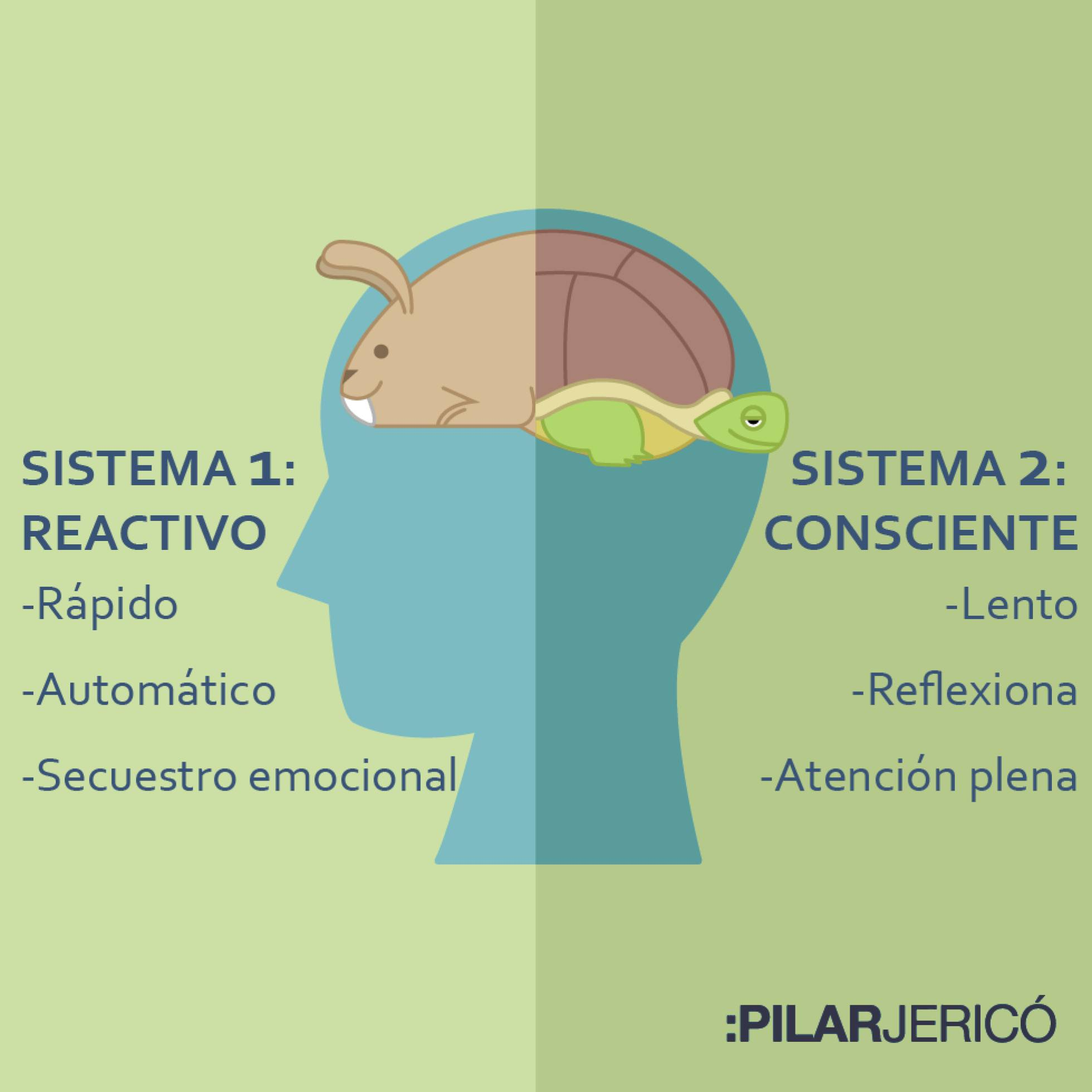 sistema neuronales