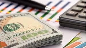 ¿Qué es el dólar solidario?