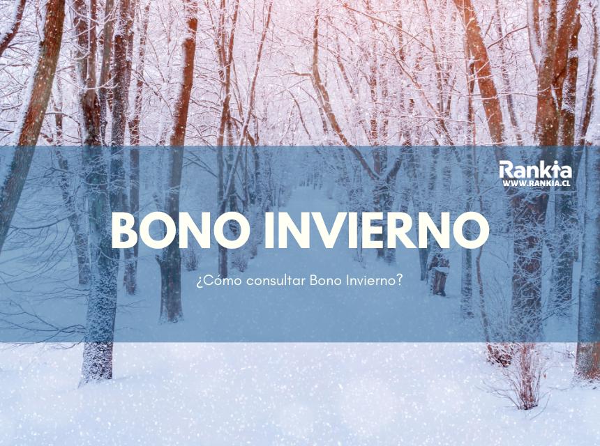 Bono Invierno: ¿Cómo consultar Bono Invierno?