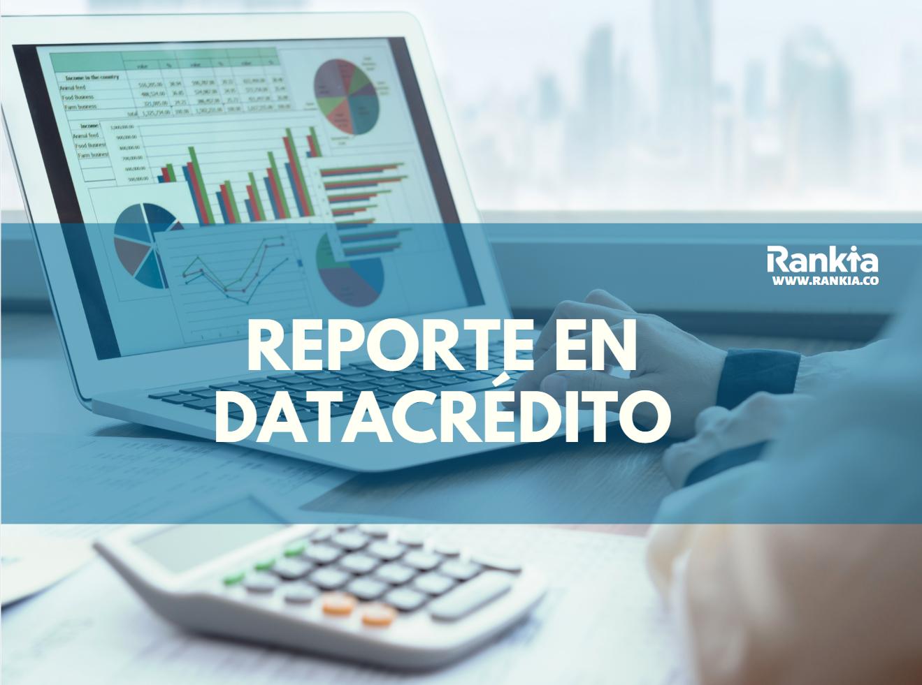 Reportes en DataCrédito: ¿Cómo salir?