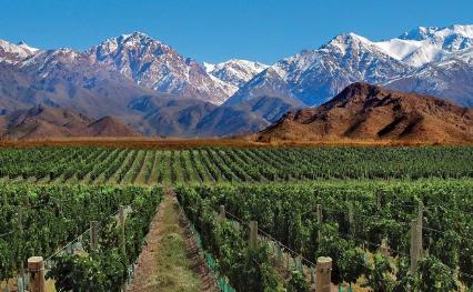 Mejores ciudades para vivir en Argentina 2020: Mendoza