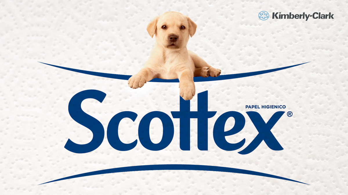 Marca de papel higiénico Scottex