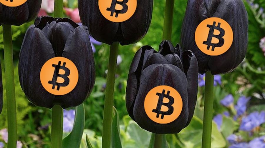 Kriptovaliutos krano apžvalgos Kaip Uždirbti Pinigus Iš Namų Bitcoin
